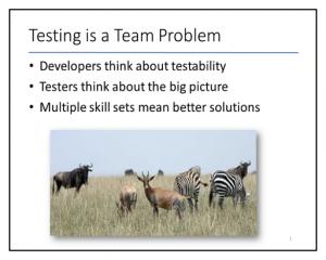 Team-Testing-1